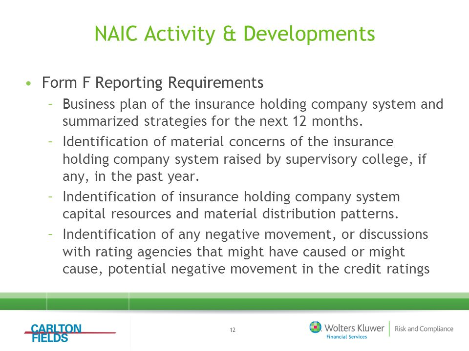 NAIC Activity & Developments Form F Reporting Requirements –Business plan of the insurance holding company system and summarized strategies for the next 12 months.