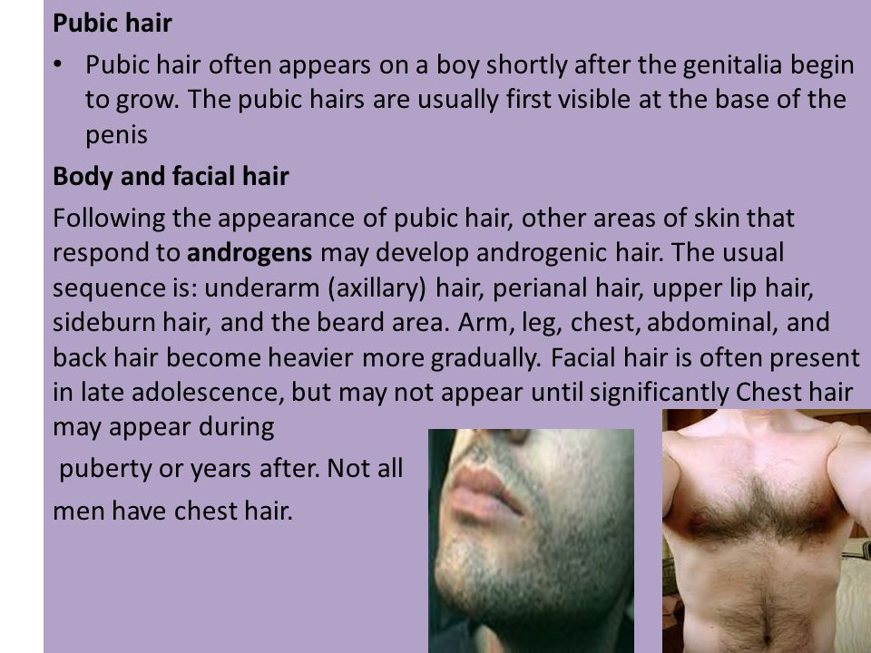 Questionaire What is androgenic hair.Give examples.
