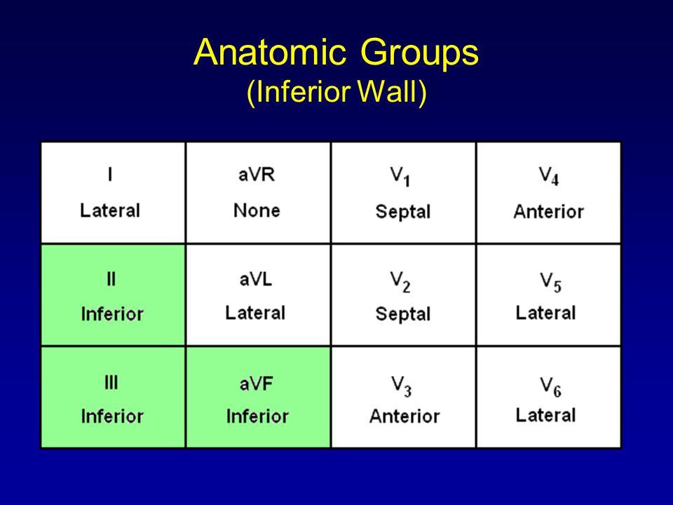 Anatomic Groups (Inferior Wall)