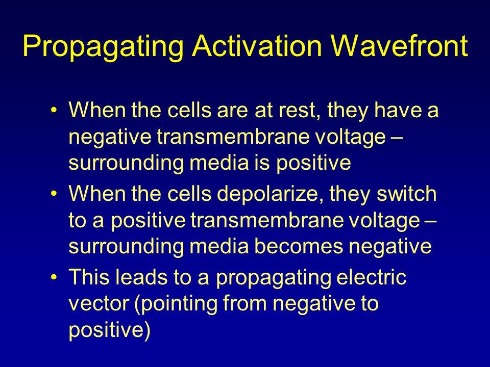 Propagating Activation Wavefront