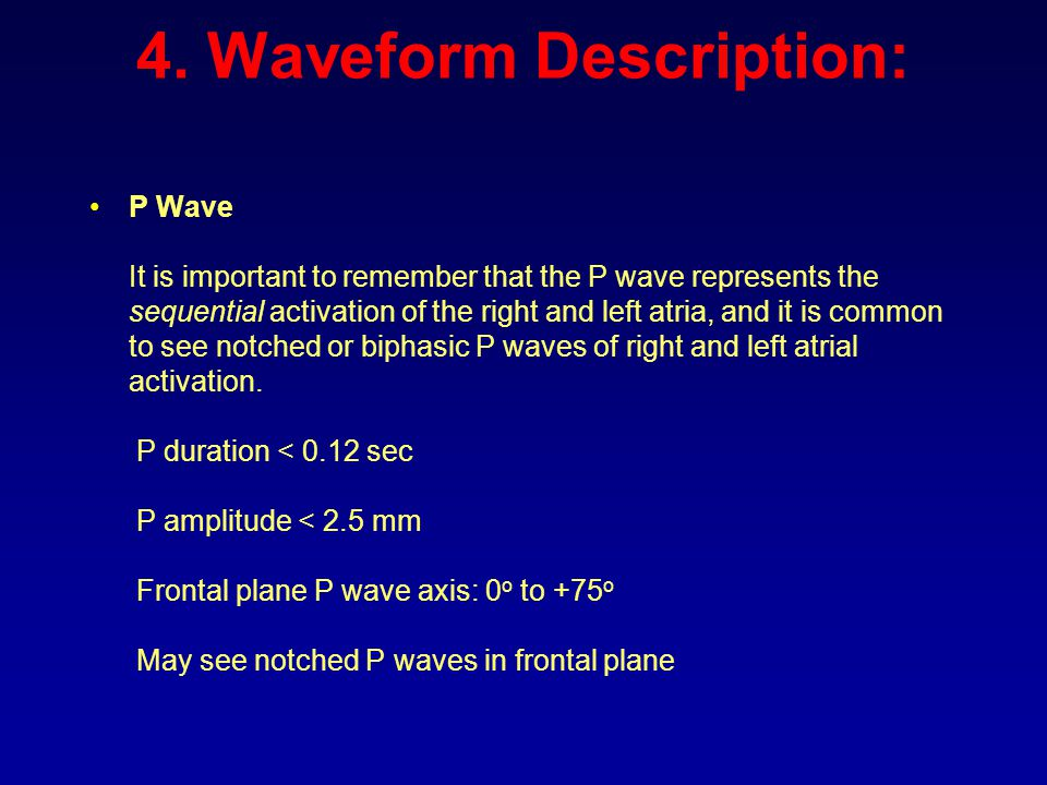 4. Waveform Description: P Wave It is important to remember that the P wave represents the sequential activation of the right and left atria, and it i
