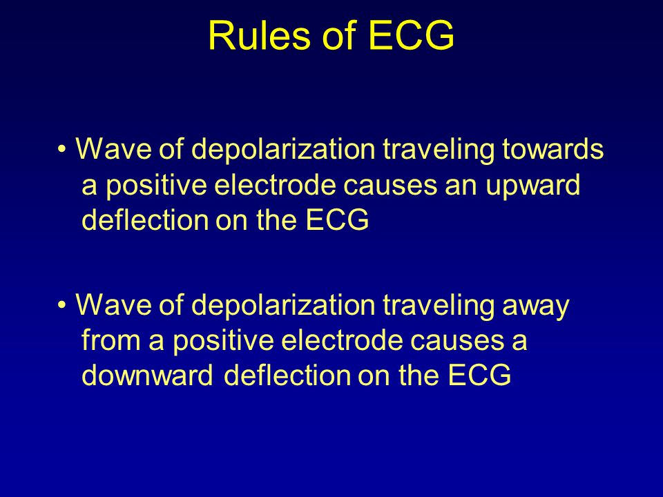 Propagating Activation Wavefront Depol.toward positive electrode Positive Signal Repol.