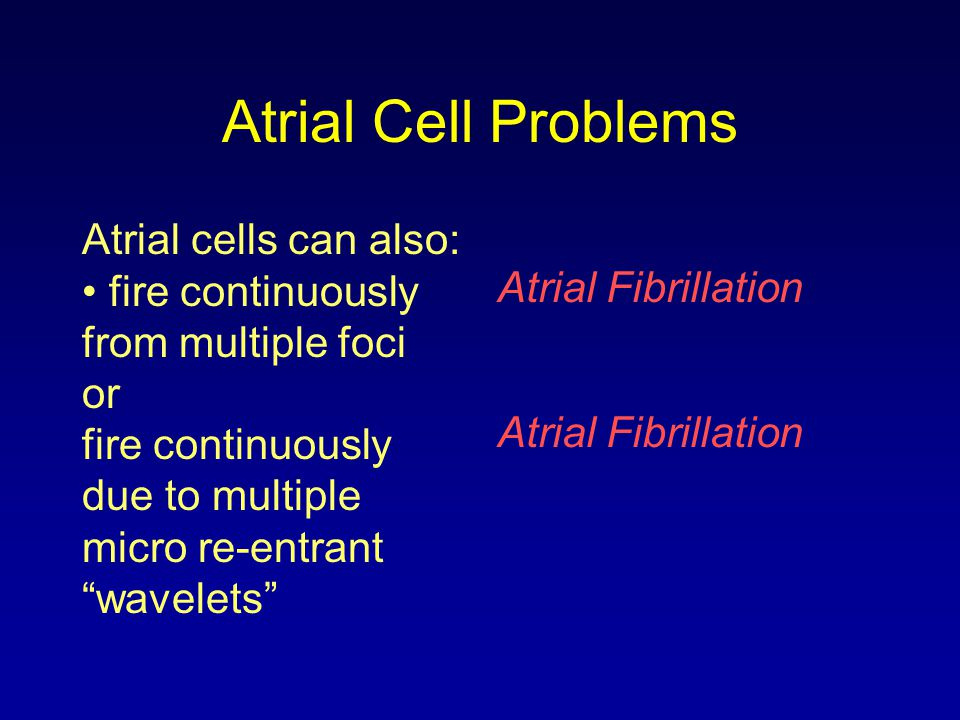 """Atrial Cell Problems Atrial cells can also: fire continuously from multiple foci or fire continuously due to multiple micro re-entrant """"wavelets"""" Atri"""