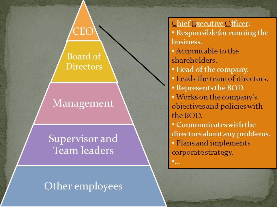 CEO Board of Directors Management Supervisor and Team leaders Other employees Chief Executive Officer: Responsible for running the business.