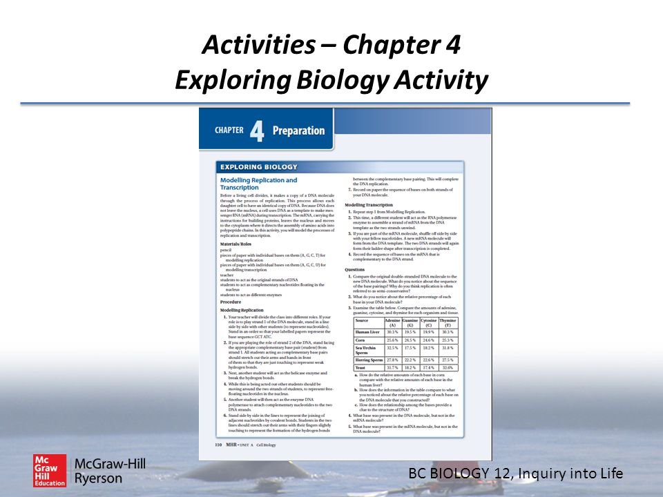 BC BIOLOGY 12, Inquiry into Life Activities – Chapter 4 Exploring Biology Activity