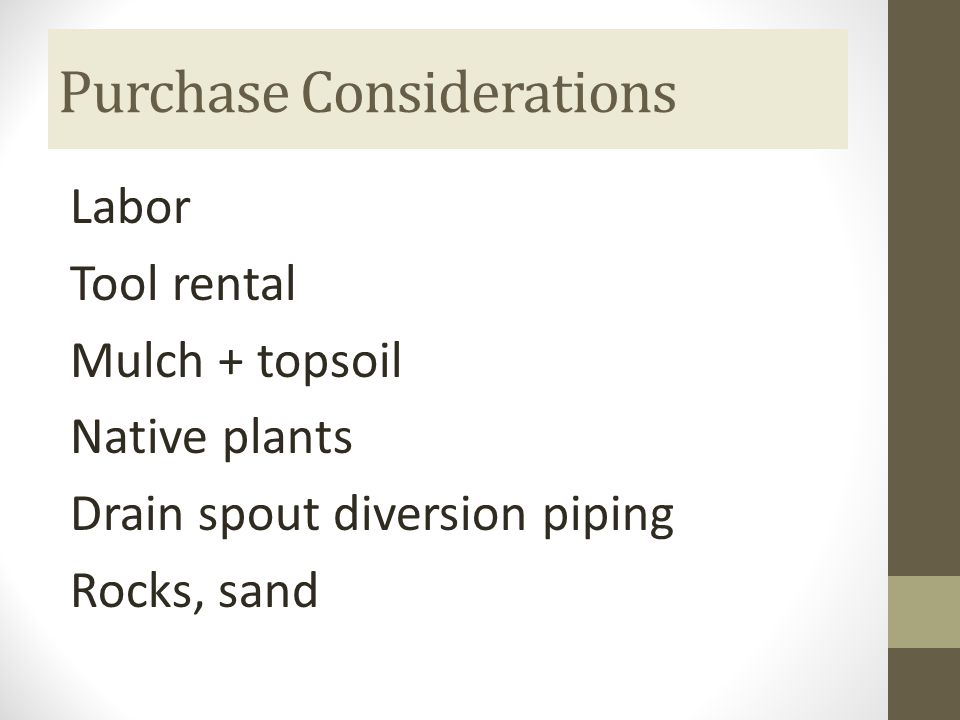 Purchase Considerations Labor Tool rental Mulch + topsoil Native plants Drain spout diversion piping Rocks, sand