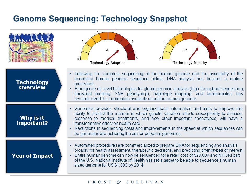 Technology Overview Following the complete sequencing of the human genome and the availability of the annotated human genome sequence online, DNA anal
