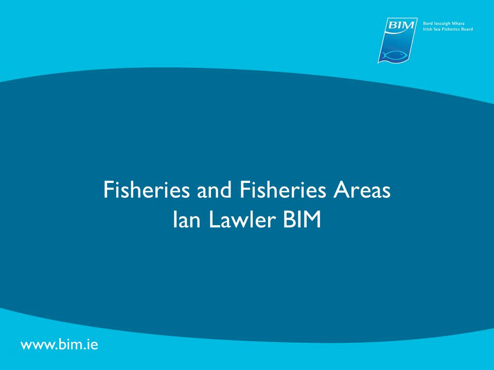 SWOT Analysis – Key Themes Fisheries Implementation of new CFP – Landing Obligation, MSY Matching fleet to available resources Managing inshore fisheries Protection of marine environment & biodiversity