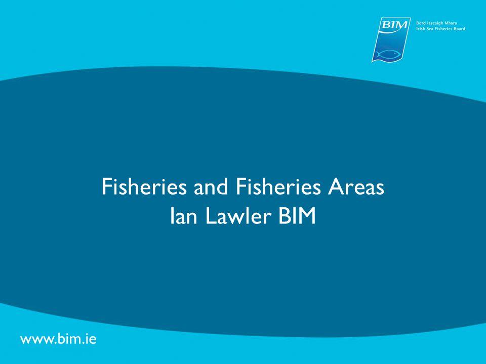 Fisheries – Fleet Development Measure Young Fishermen's Scheme Start up support for young fishermen (32a) Fleet Adjustment Scheme Permanent cessation of fishing activities (33b)