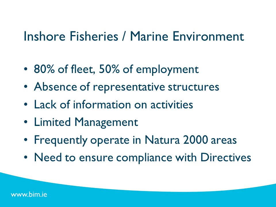 SWOT Analysis – Key Themes Fisheries Areas Enhance role of FLAGs Develop new support mechanisms Improve access to skills development Protection of marine environment & biodiversity