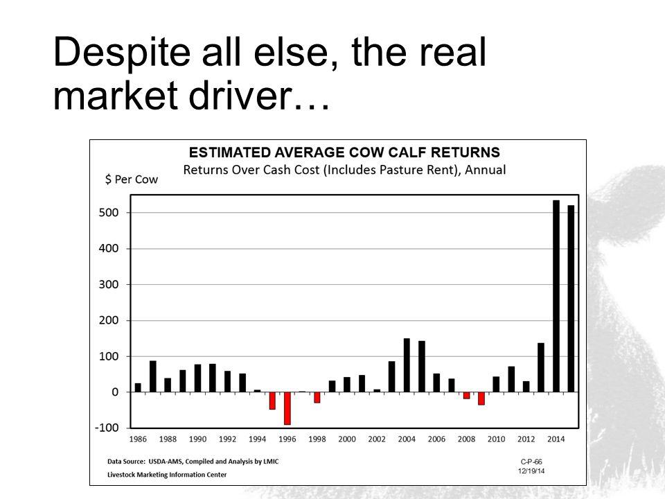 Despite all else, the real market driver…