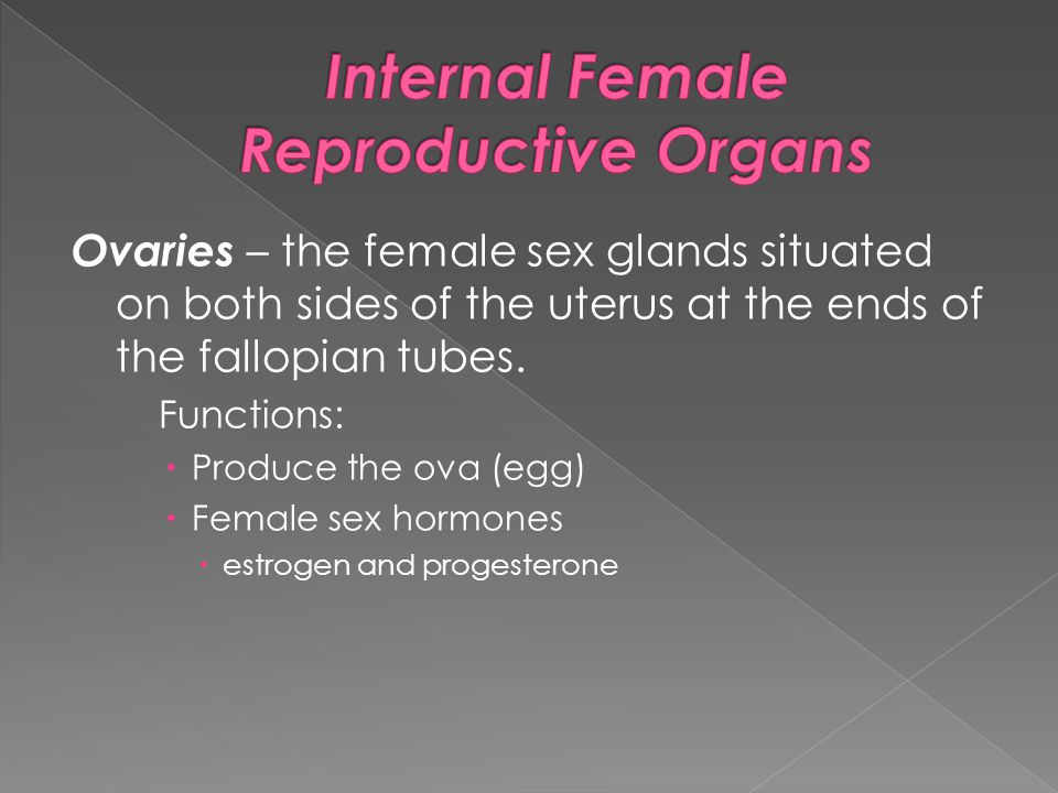 Ovaries – the female sex glands situated on both sides of the uterus at the ends of the fallopian tubes. Functions:  Produce the ova (egg)  Female s