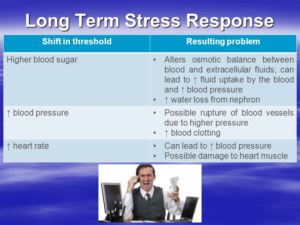 Long Term Stress Response Shift in thresholdResulting problem Higher blood sugarAlters osmotic balance between blood and extracellular fluids; can lead to ↑ fluid uptake by the blood and ↑ blood pressure ↑ water loss from nephron ↑ blood pressurePossible rupture of blood vessels due to higher pressure ↑ blood clotting ↑ heart rateCan lead to ↑ blood pressure Possible damage to heart muscle