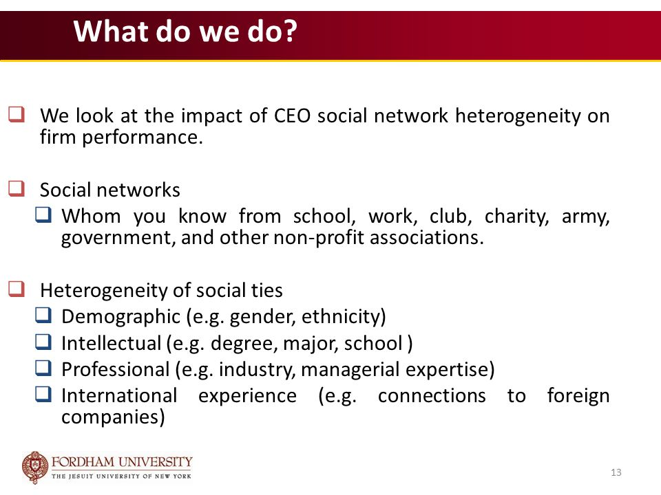 13 What do we do.  We look at the impact of CEO social network heterogeneity on firm performance.