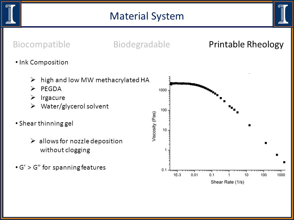 Material System Ink Composition  high and low MW methacrylated HA  PEGDA  Irgacure  Water/glycerol solvent BiocompatibleBiodegradablePrintable Rheology Shear thinning gel  allows for nozzle deposition without clogging G' > G for spanning features