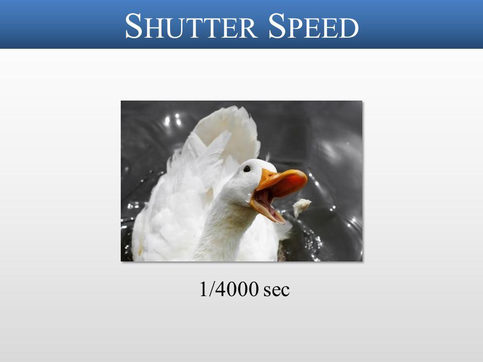 S HUTTER S PEED 1/4000 sec