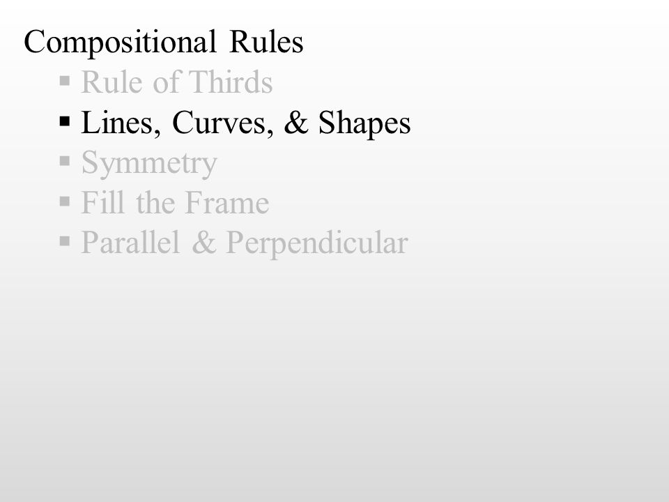 Compositional Rules  Rule of Thirds  Lines, Curves, & Shapes  Symmetry  Fill the Frame  Parallel & Perpendicular