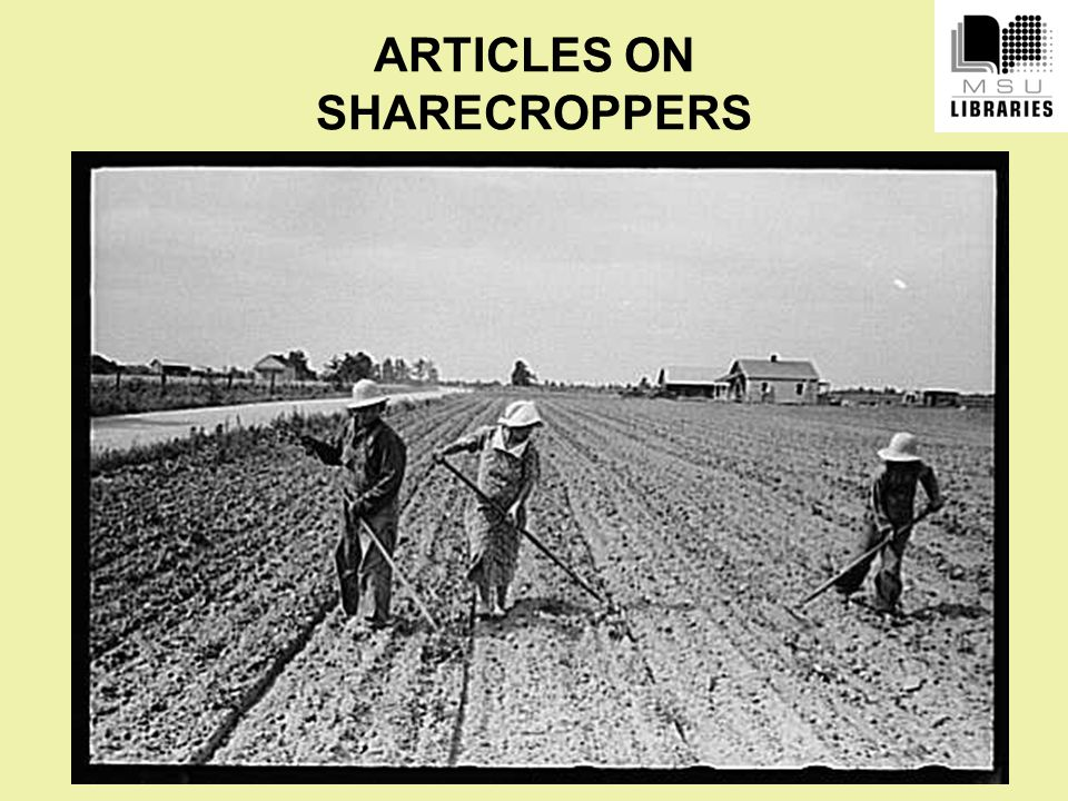 ARTICLES ON SHARECROPPERS
