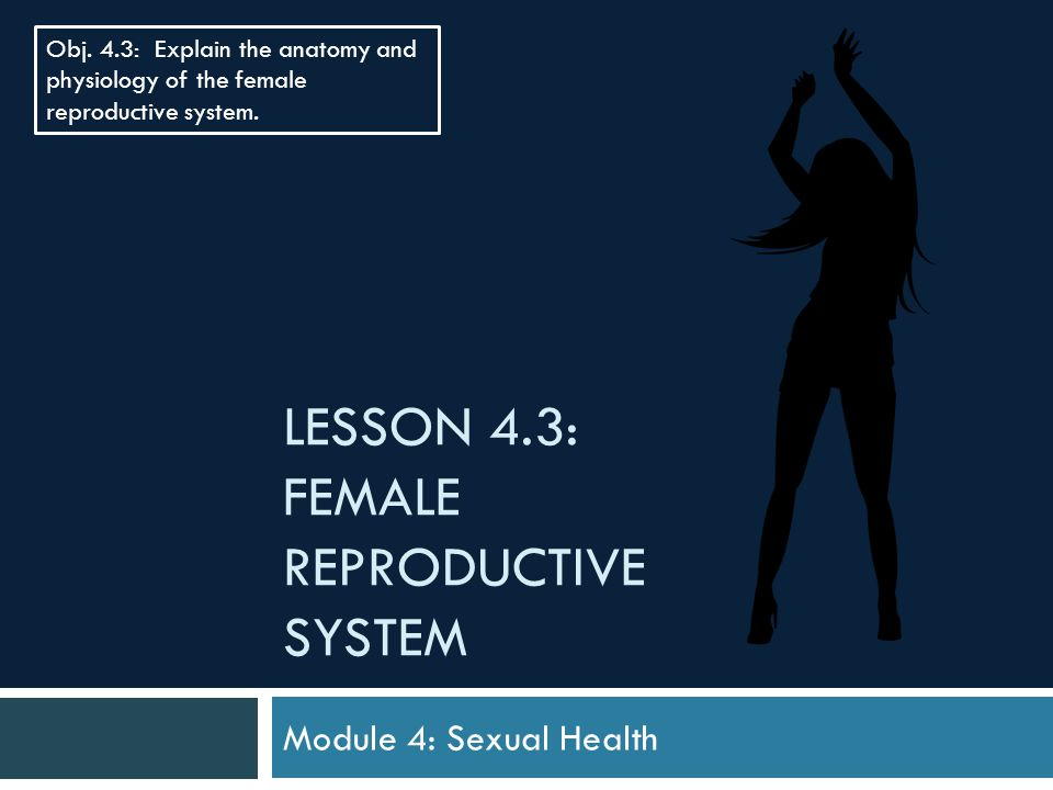 LESSON 4.3: FEMALE REPRODUCTIVE SYSTEM Module 4: Sexual Health Obj. 4.3: Explain the anatomy and physiology of the female reproductive system.