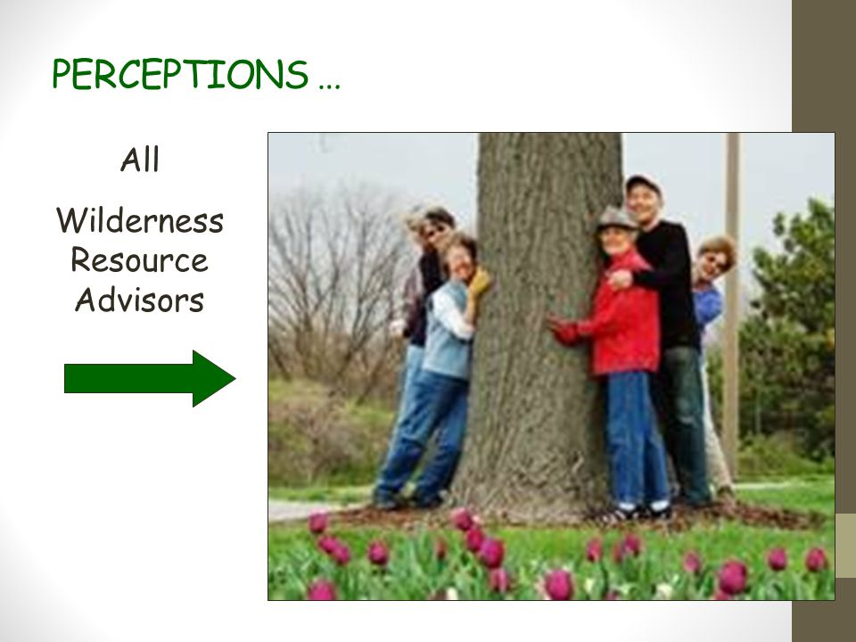 PERCEPTIONS … All Wilderness Resource Advisors