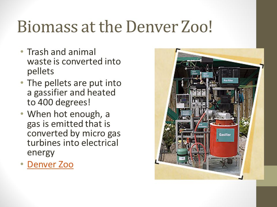 Biomass at the Denver Zoo! Trash and animal waste is converted into pellets The pellets are put into a gassifier and heated to 400 degrees! When hot e