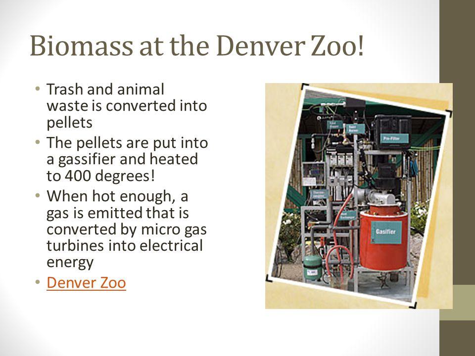 Biomass at the Denver Zoo.