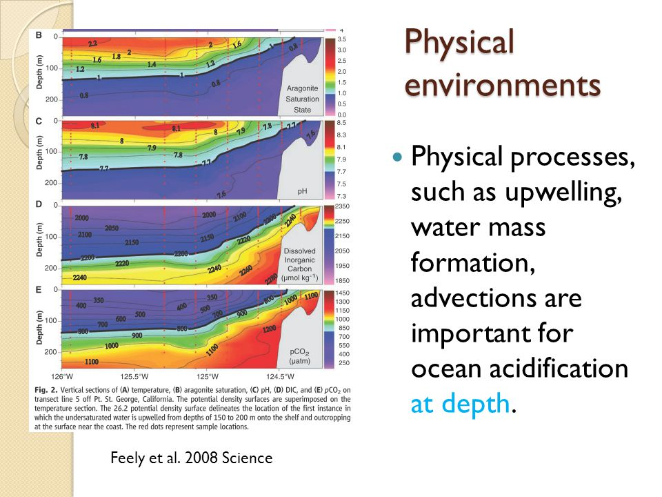 Physical environments Physical processes, such as upwelling, water mass formation, advections are important for ocean acidification at depth.