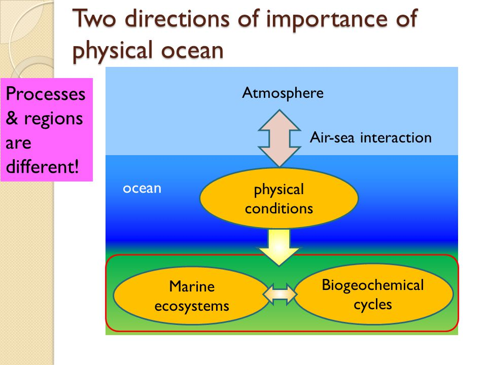 Recommendation/proposal Therefore, we strongly recommend that in their future endeavors CLIVAR, or CLIMAR, assign appropriate weights to the understanding of physical processes that influence the biogeochemical cycles and marine ecosystems.