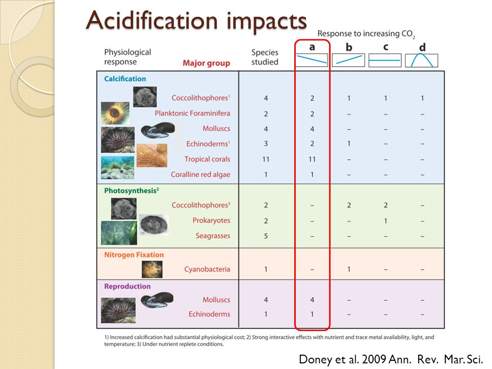 Acidification impacts Doney et al. 2009 Ann. Rev. Mar. Sci.