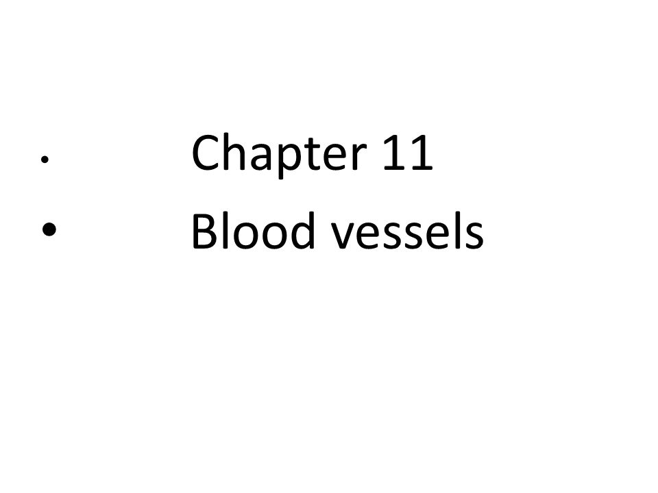 Chapter 11 Blood vessels