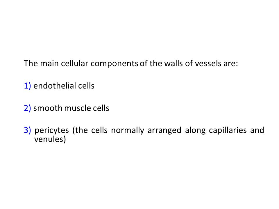 The main cellular components of the walls of vessels are: 1) endothelial cells 2) smooth muscle cells 3) pericytes (the cells normally arranged along
