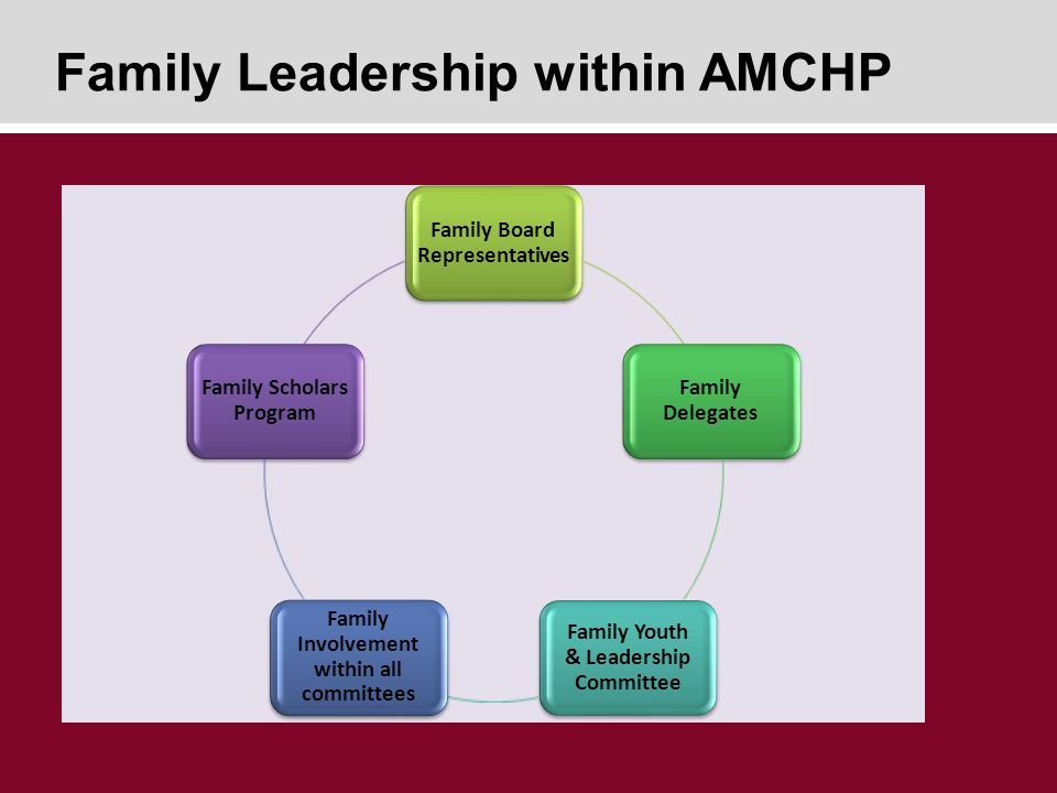Family Leadership within AMCHP Family Board Representatives Family Delegates Family Youth & Leadership Committee Family Involvement within all committees Family Scholars Program