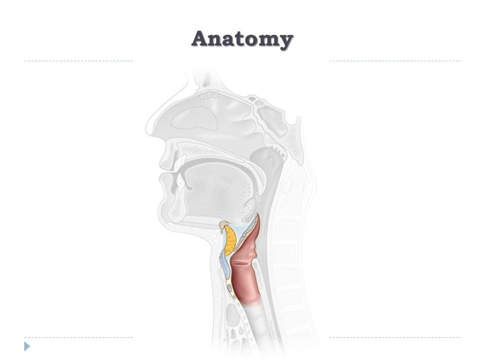 Airway Expansion Procedures  Endoscopic:  Dilatation  CO 2 Laser  Open Procedures:  Anterior cricoid split  Laryngotracheal reconstruction (LTR)  Cricotracheal resection (CTR)