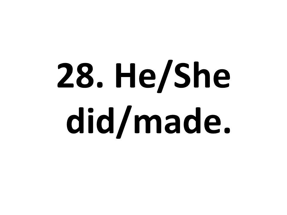 28. He/She did/made.