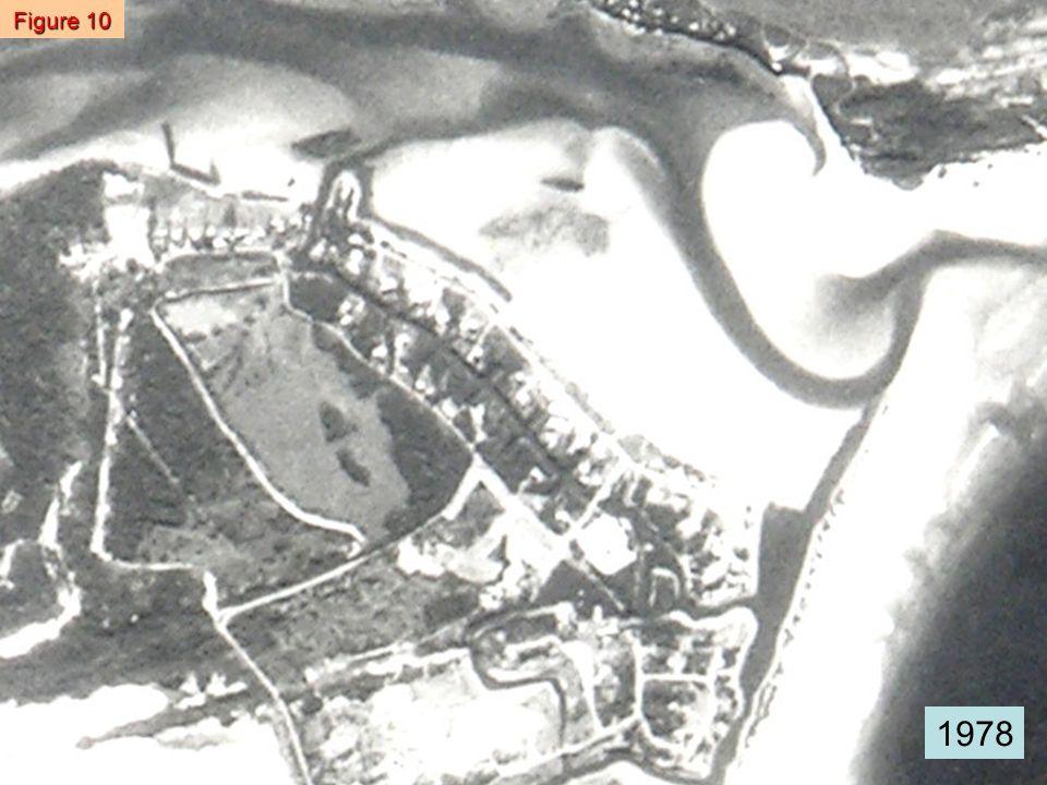 Figure 11 1985