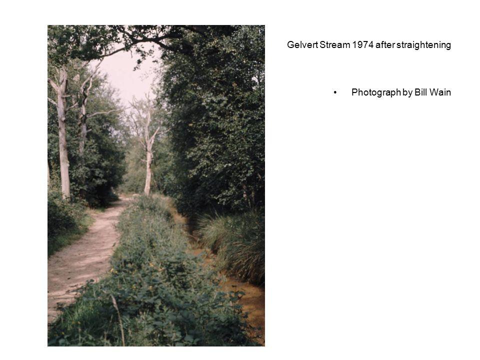 Gelvert Stream 1974 after straightening Photograph by Bill Wain