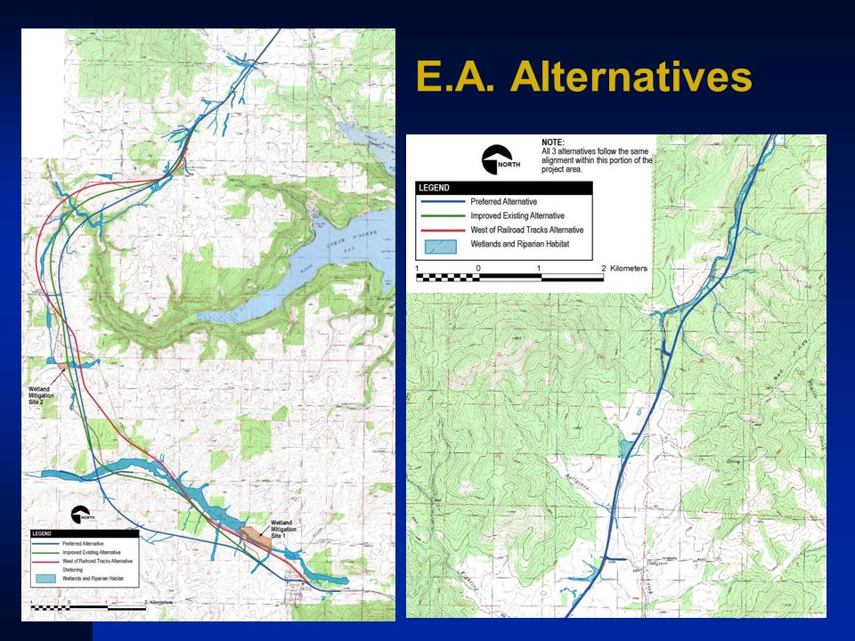 E.A. Alternatives