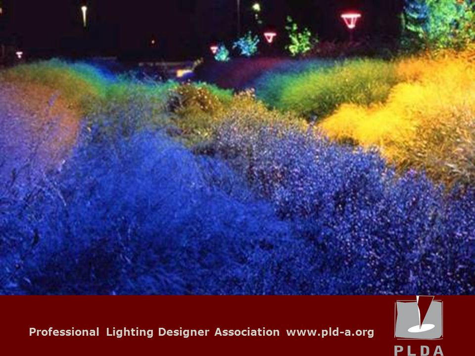 Professional Lighting Designer Association www.pld-a.org Local Units Why to be part of PLDA.