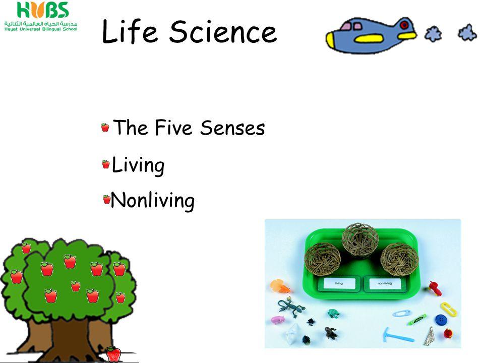 The Five Senses Nonliving Living