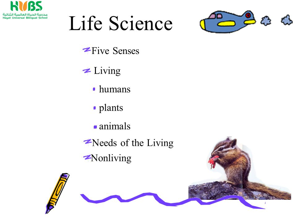 Living humans plants animals Life Science Five Senses Needs of the Living Nonliving