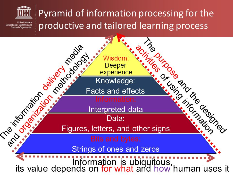 Pyramid of information processing for the productive and tailored learning process Bits and bytes: Strings of ones and zeros Bits and bytes: Strings o