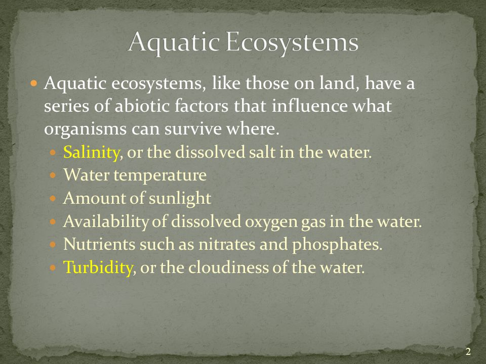 Aquatic ecosystems, like those on land, have a series of abiotic factors that influence what organisms can survive where.