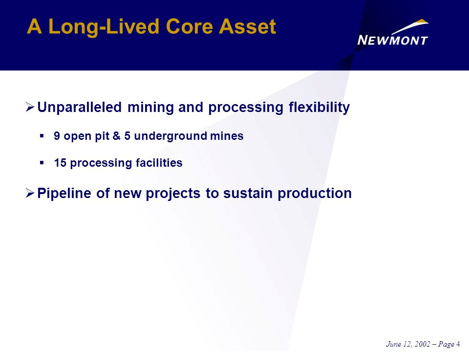 June 12, 2002 – Page 4  Unparalleled mining and processing flexibility  9 open pit & 5 underground mines  15 processing facilities  Pipeline of new projects to sustain production A Long-Lived Core Asset