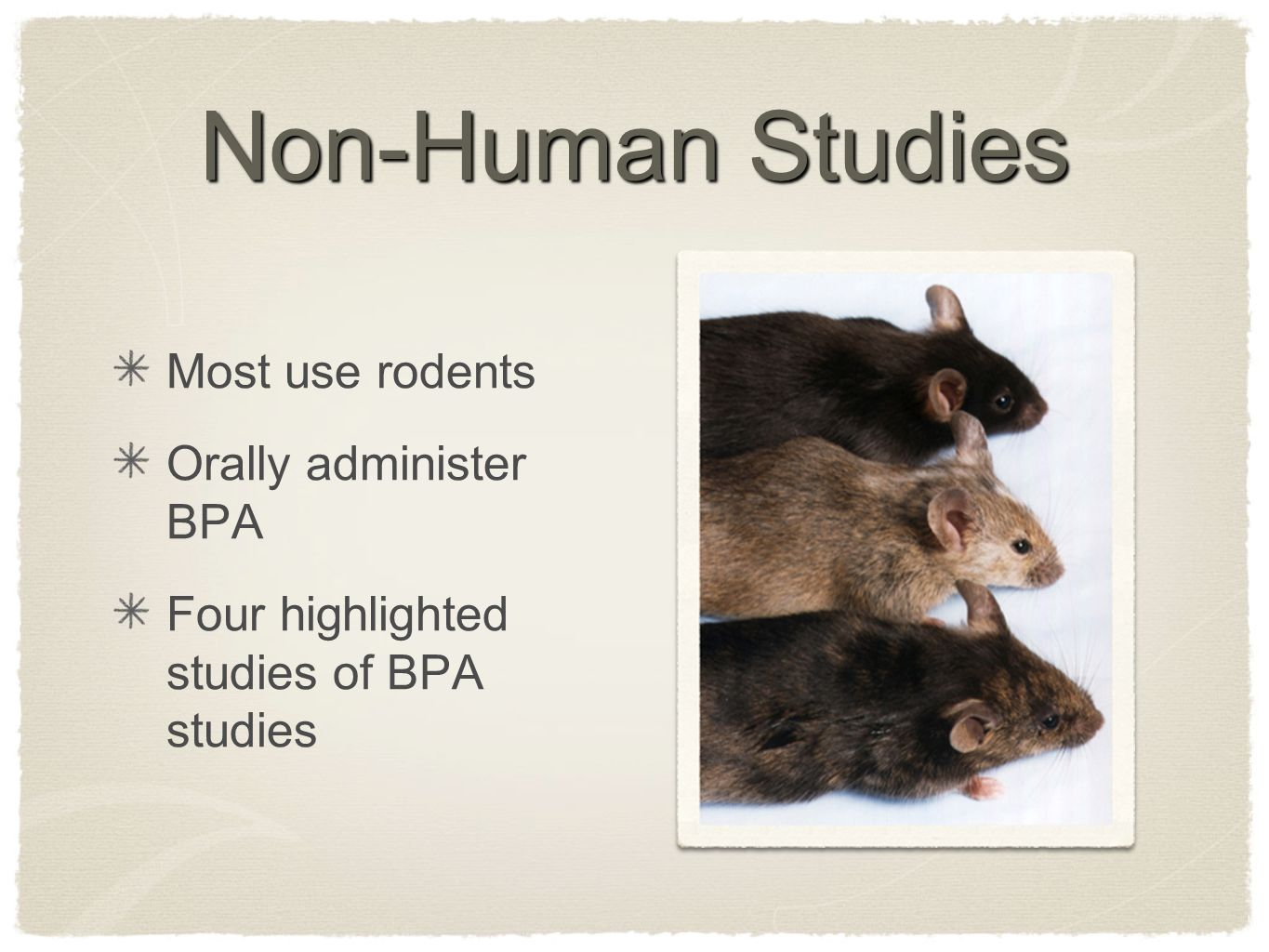 Non-Human Studies Most use rodents Orally administer BPA Four highlighted studies of BPA studies