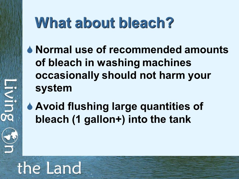 What about bleach.