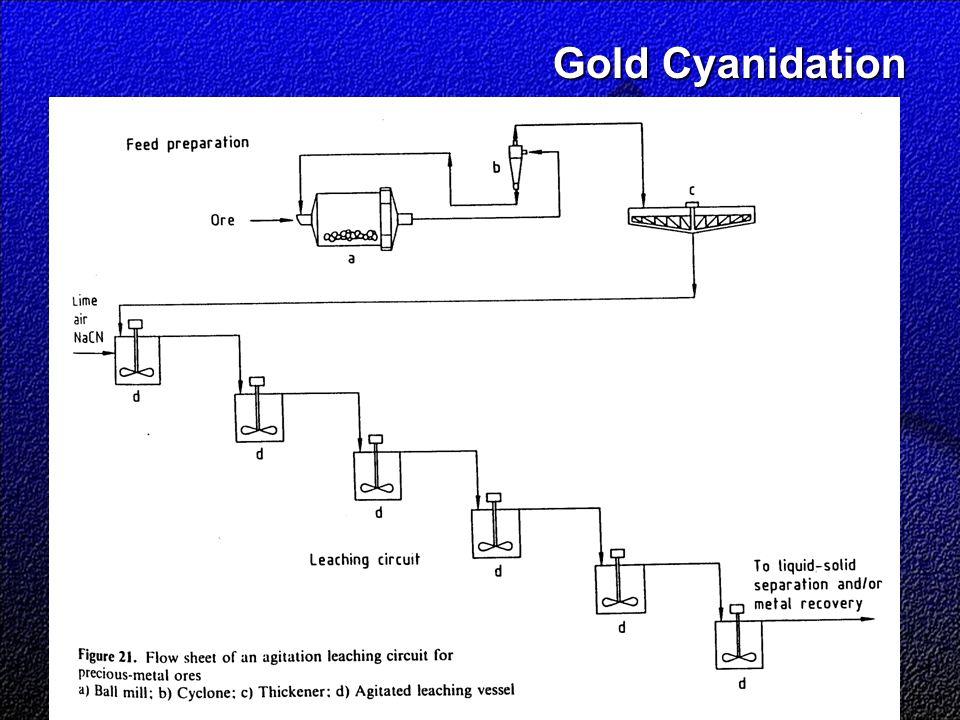 Gold Cyanidation
