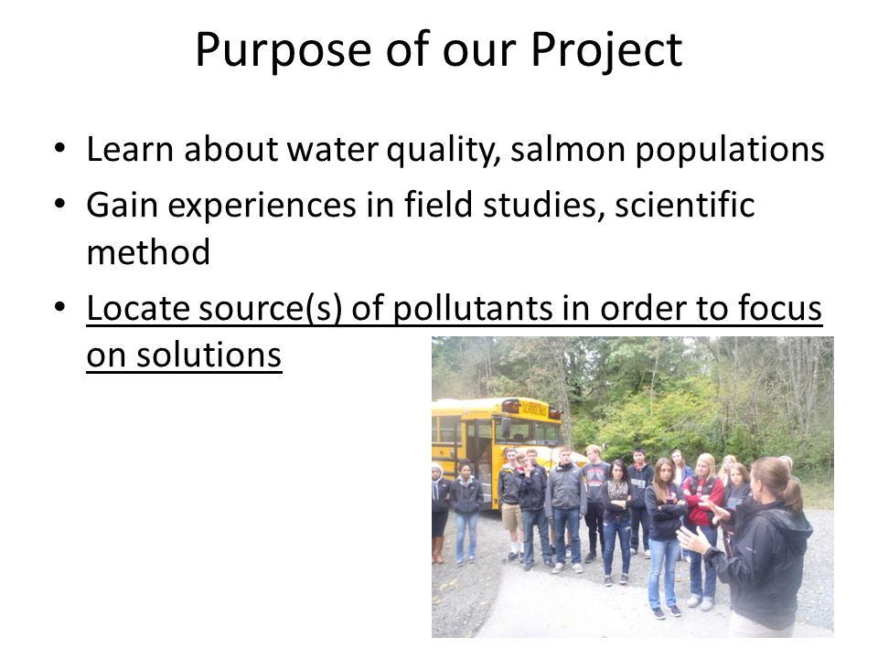 Purpose of our Project Learn about water quality, salmon populations Gain experiences in field studies, scientific method Locate source(s) of pollutants in order to focus on solutions