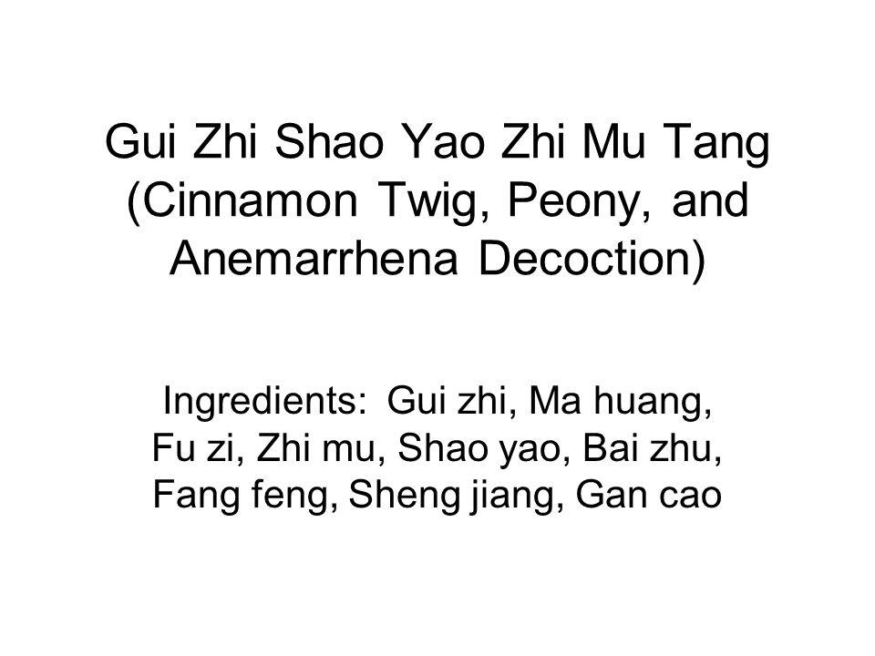 Gui Zhi Shao Yao Zhi Mu Tang (Cinnamon Twig, Peony, and Anemarrhena Decoction) Ingredients: Gui zhi, Ma huang, Fu zi, Zhi mu, Shao yao, Bai zhu, Fang