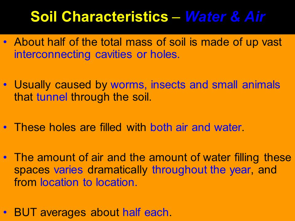 Soil Characteristics – Water & Air About half of the total mass of soil is made of up vast interconnecting cavities or holes. Usually caused by worms,