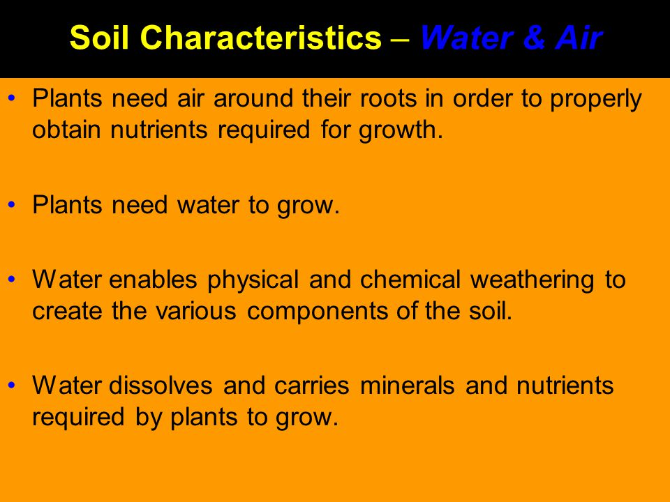 Soil Characteristics – Water & Air Plants need air around their roots in order to properly obtain nutrients required for growth. Plants need water to